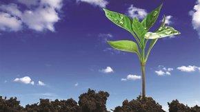 InnovaSol - Atelier participatif sur la réhabilitation des sites pollués le 18 septembre
