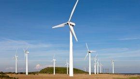 Suivi environnemental – parc éolien Activité des chauves-souris